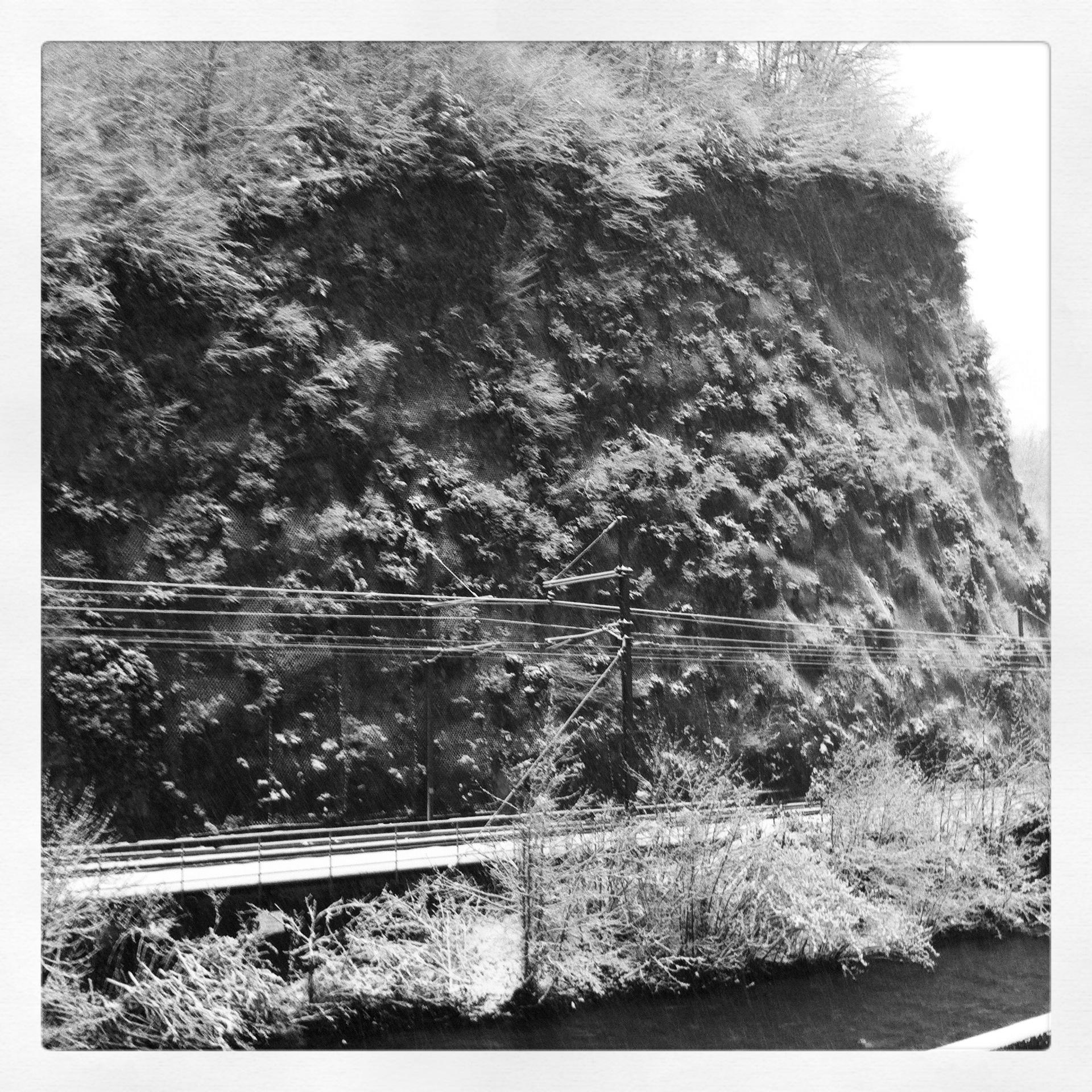 Le nez dans la poudre blanche la mare d 39 arsino la crapaude - Maison au bord de la voie ferree ...